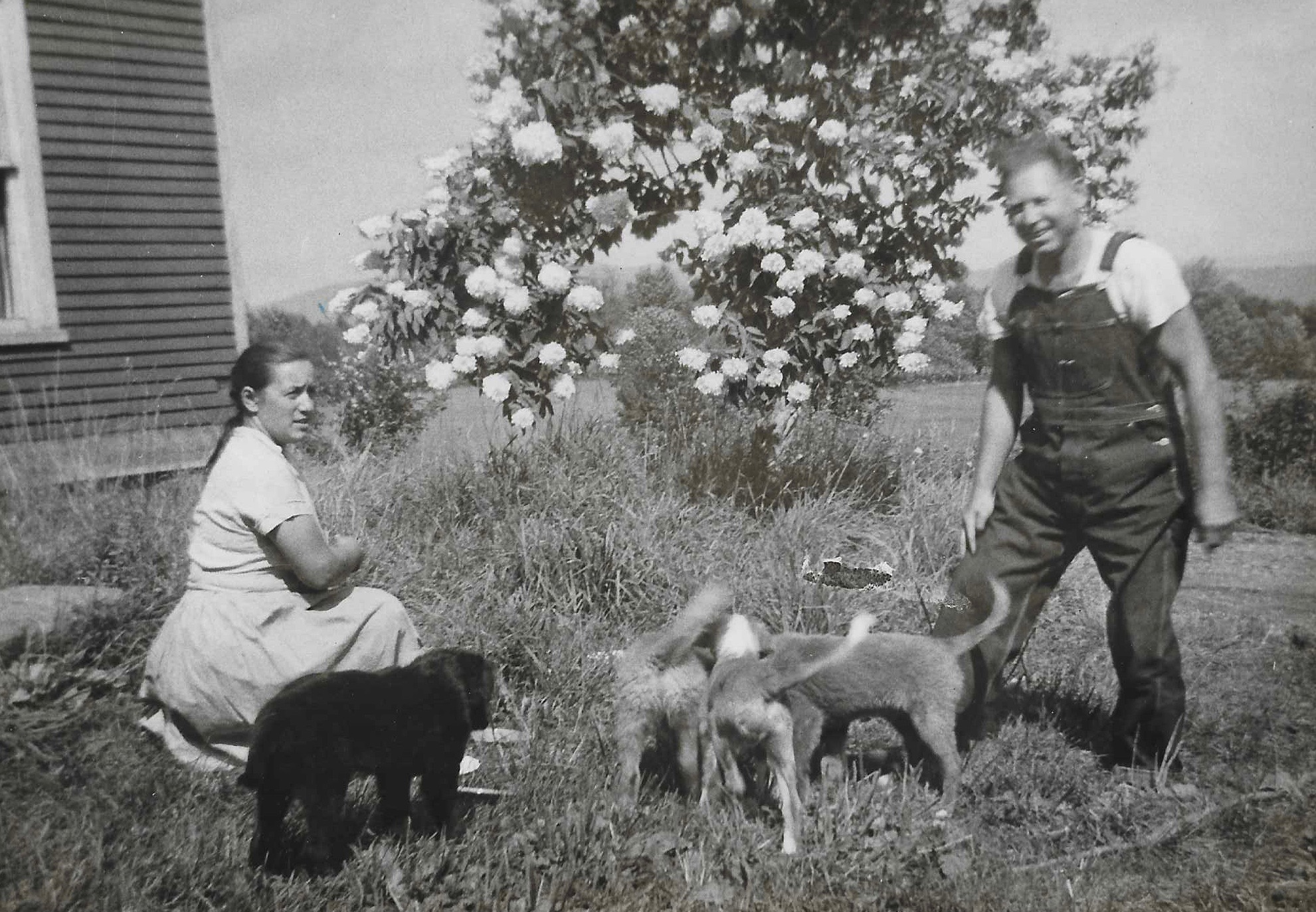 Silvia and Juhan Umbjarv at the Braintree, VT farm ca. 1957.